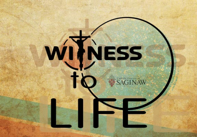 Witness to Life Logo